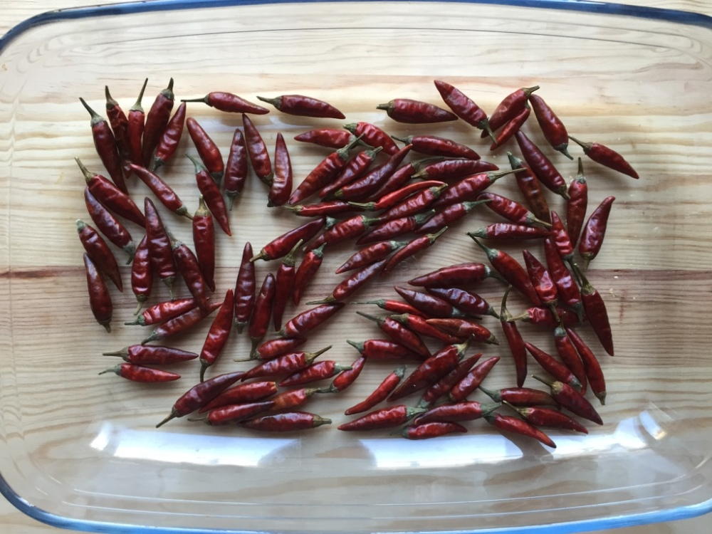 red-chillies-roasted