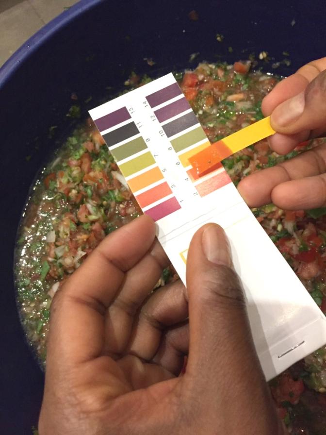 fermented-salsa-recipe-10