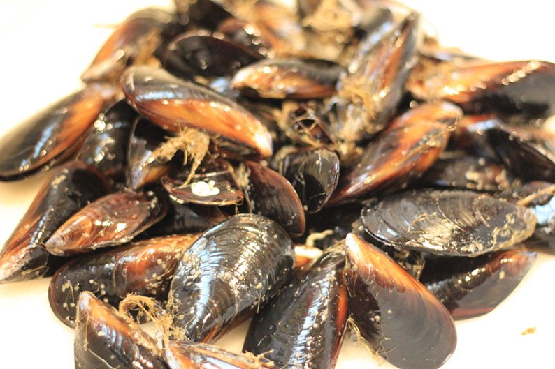 steamed-mussels-in-cream-and-cider-recipe-2